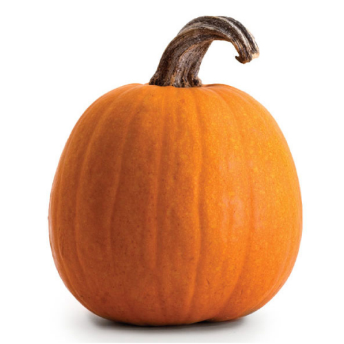 Jack-o-Lanterns – October 22nd