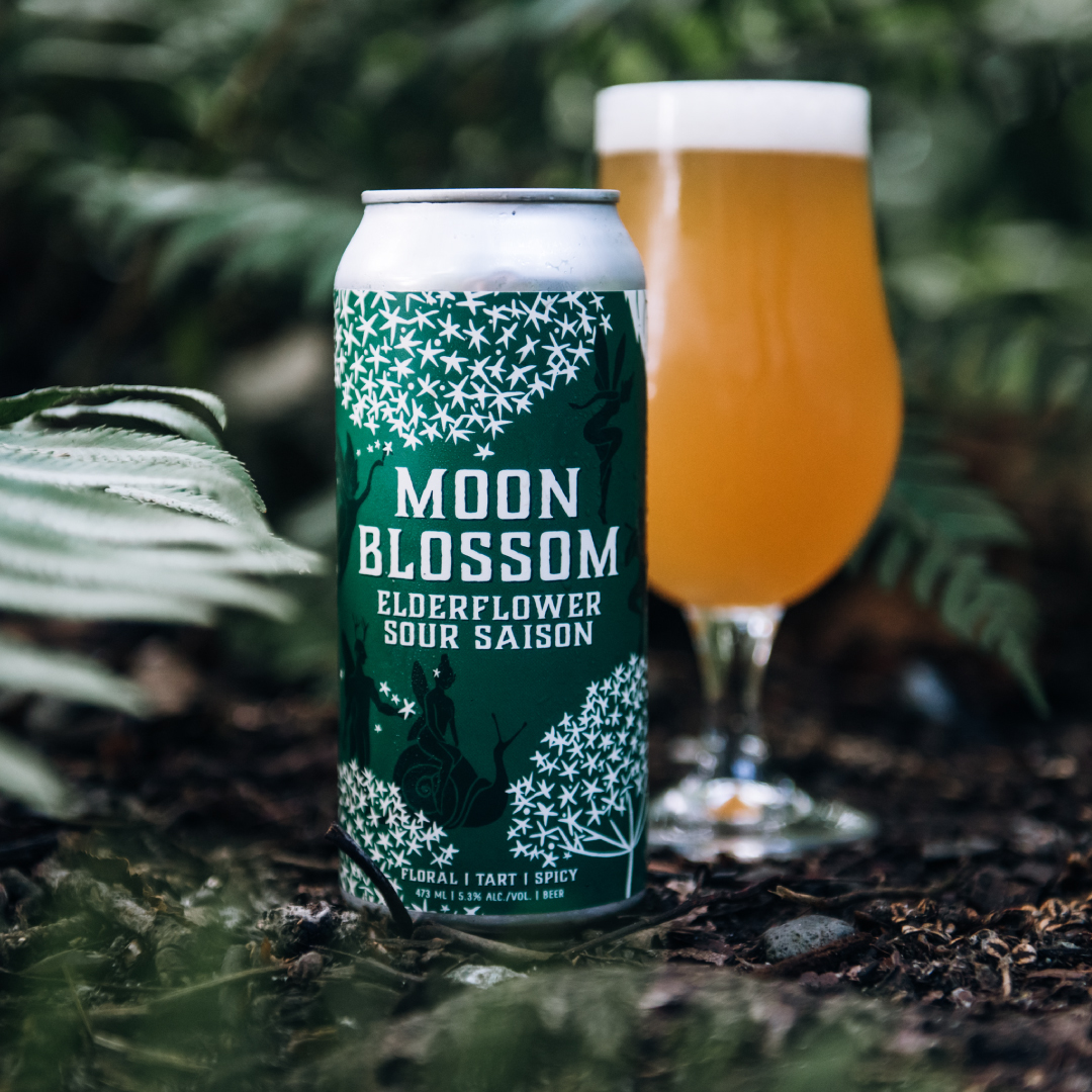 MOON BLOSSOM | LIMITED RELEASE